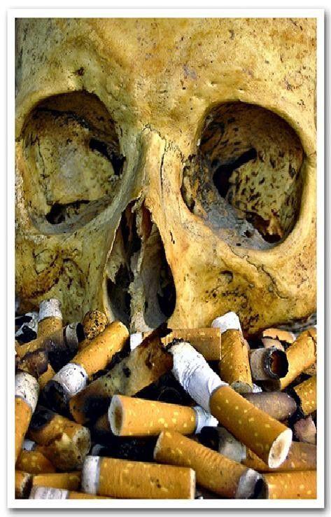 Le tabagisme, ce grand mal qui menace l'humanité entière !