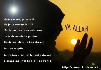 Citation Islamique